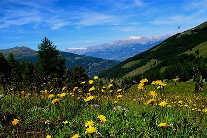 Chez-Flora-Activities-Summer-420x280